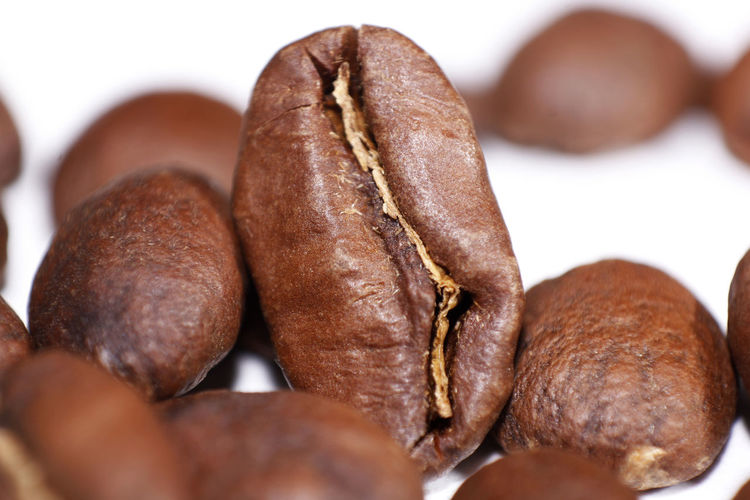 Coffee bean isolate on white Coffee Bean Breakfast Brown Food Food And Drink Freshness Indoors  No People Nut Selective Focus