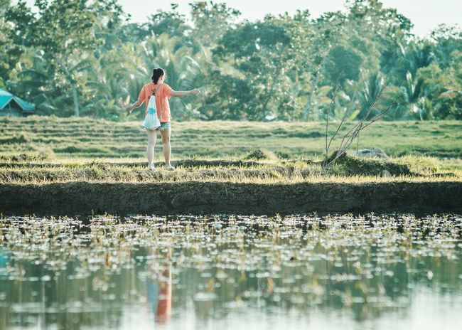 I'm coming home TheGreatOutdoors Water Tree Rice Paddy Full Length Agriculture Standing Cultivated Land Farmland