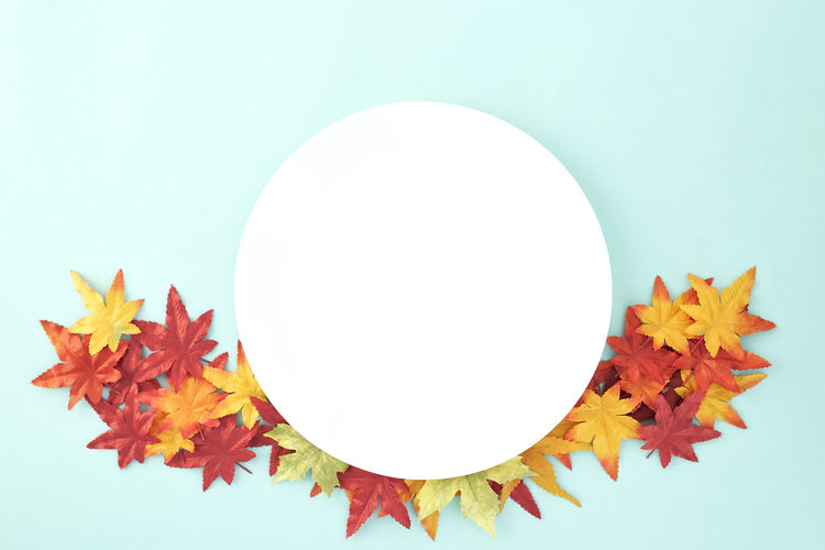 Empty dish decorative Halloween or autumn leaves on pastel pale blue background, with copy space. Flat lay. Sales Holiday Flyer Banner Poster Travel Traveling Traveler Vacation Trip Sale Template Mockup Abstract Art Autumn Leaves Falling 2019 2020 Wreath New Year Halloween Autumn Leaves Autumn Background Plate Minimal Flat Lay Fall Background Leaf Design Frame Orange Concept Composition Green Maple Bright Pattern Forest Decoration Studio Shot Shape No People Geometric Shape Circle Close-up Plant Part Indoors  Copy Space White Background Still Life Orange Color Yellow Nature Cut Out White Color Art And Craft Colored Background Maple Leaf Change Blue Background