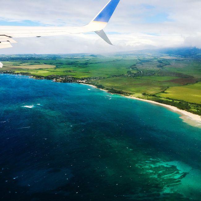 Pivotal Ideas Maui no ka oi!