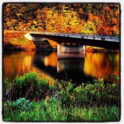 Bridge Into Color. #miltonvt #vt #foliage Foliage 802 Iphoneonly Miltonvt Photooftheday Igharjit Picoftheday Vt_scene Vermont Vermont_scene Igvermont Igvt All_shots Vt_landscape Instamood Bestoftheday Vermont_foliage Instagood Fallinvt Webstagram Vt_foliage Whpshiftingseasons Vermontbtvermonters Vt Reflection Vt_scenery Vermont_scenery
