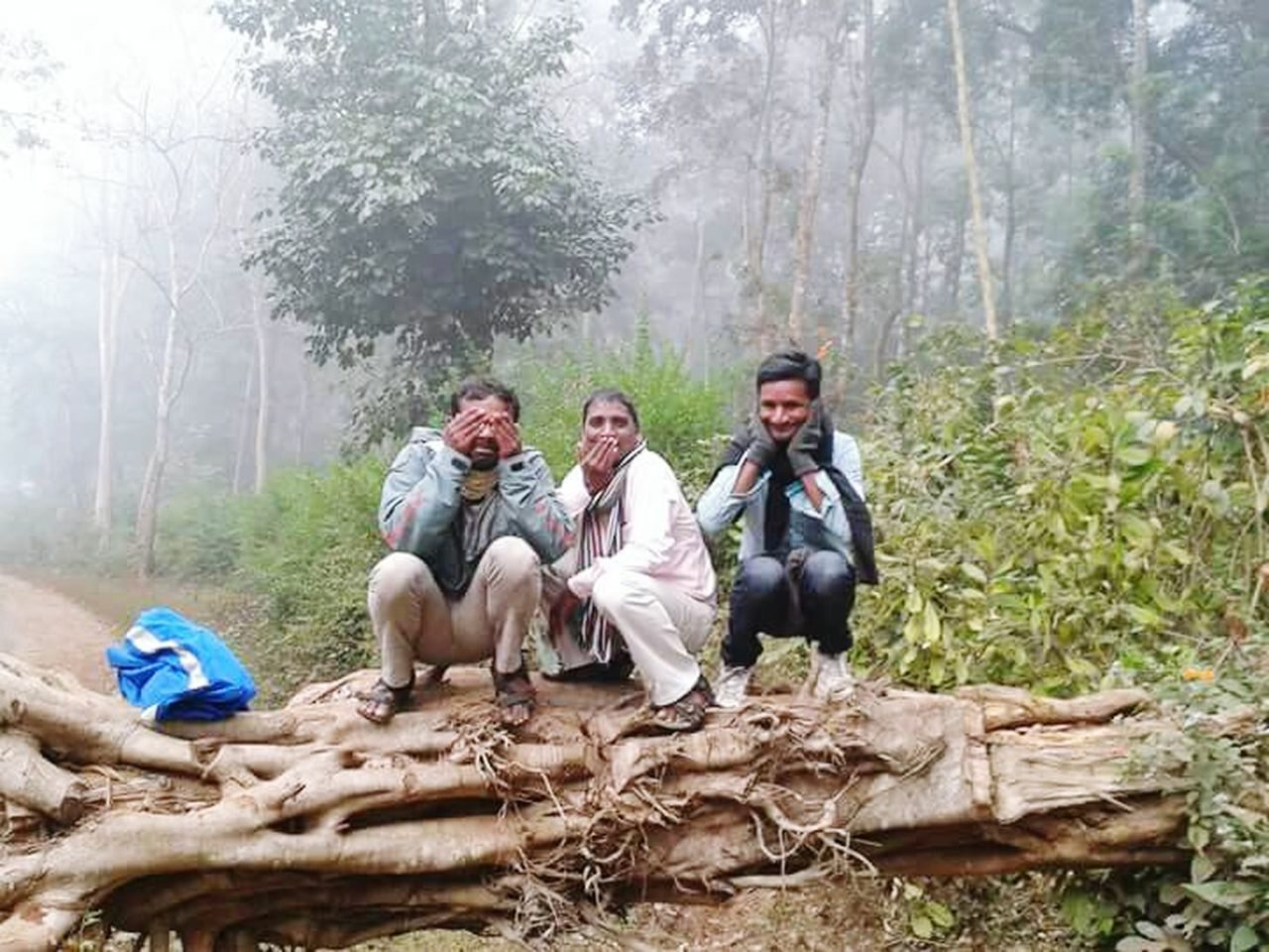 sitting, mature adult, mature men, forest, tree, men, day, togetherness, mature women, outdoors, father, nature, adult, women, mountain, smiling, full length, young adult, people, adults only