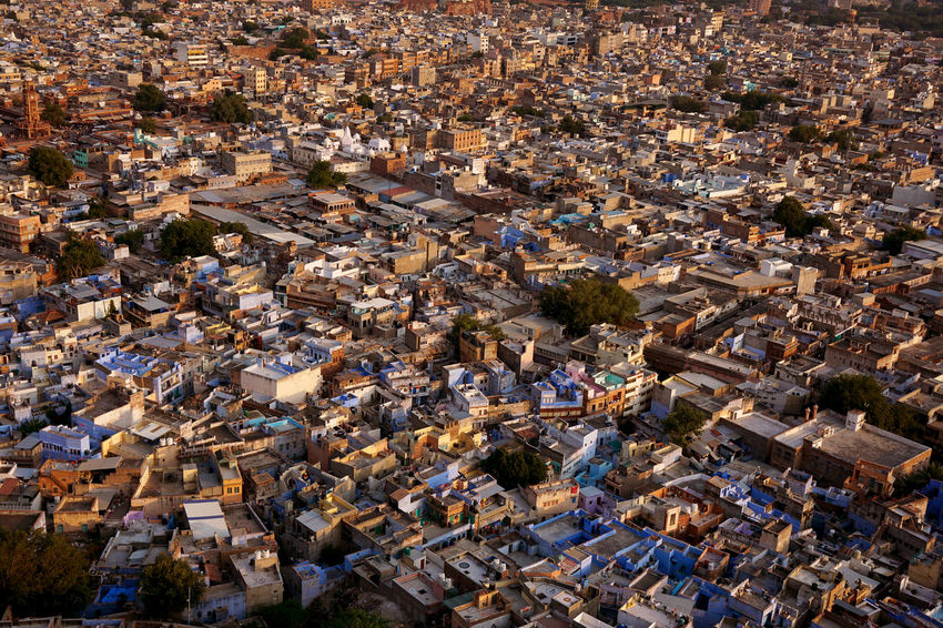 Aerial View Architecture Backgrounds Blue City Built Structure City City Life Cityscape Day Elevated View Famous Place India Jodhpur Mehrangarh No People Rajasthan Residential Building Residential District Tourism Town TOWNSCAPE Travel Destinations A Bird's Eye View My Year My View