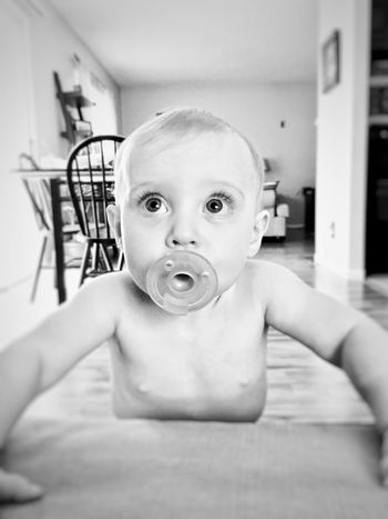 Baby Looking At Camera Portrait Indoors  Cute Babyhood Close-up One Person Childhood Shirtless Babies Only Domestic Life Animal Themes Day Human Body Part People
