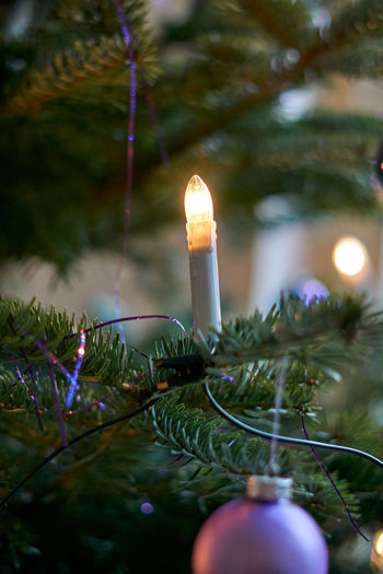 Burning Candle Celebration Christmas Christmas Decoration Close-up Flame Glowing Green Color Growth Heat - Temperature Illuminated Indoors  Lighting Equipment Nature Night No People Selective Focus Tree
