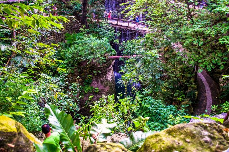 Mexican Jungles Attraction In Mexico Authentic Mexican Food Friendlylocalguides Holidays Jungles Mexico National Landmark Park Pyramid Things To Do Vacation What To See In Mexico Where To Go Xcaret