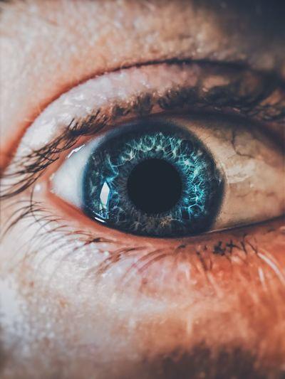 Eye Human Eye Eyesight Eyelash Close-up Human Body Part Sensory Perception Looking At Camera Macro Unrecognizable Person Blue Eyes Eyeball Body Part Real People One Person Extreme Close-up Iris - Eye Skin Day Eyebrow