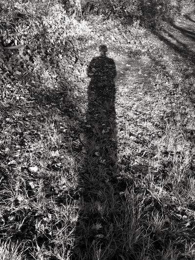 My shadow in black and white. Grass My Shadow My Shadow And Me My Shadow Looks Good My Shadow ❤ Nature One Person Outdoors Shadow Shadow Of Self Sunlight