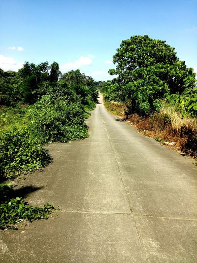Walking Endlessly. Philippines Makiling  Walking Capture The Moment Alone Earth Passing By Rough Rough Road Adventure Photography God's Beauty Cloud Trees Sky Elements Elements Of Nature Tree Road Sunlight Sky vanishing point Diminishing Perspective Countryside Grassland Greenery The Way Forward Pathway