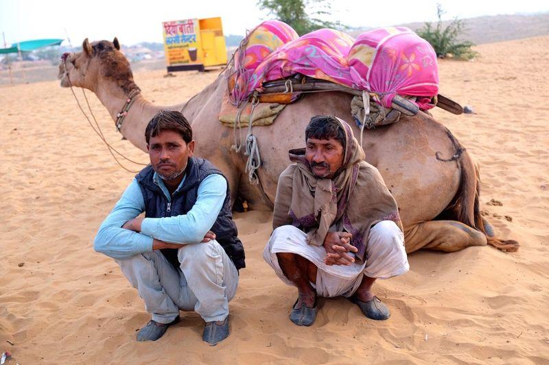 Camel ride in pushkar, Rajasthan Indian Pushkar Camel Early Morning Rajasthan Indiapictures Indianphotography Rajasthandiaries Rajasthani Culture Rajasthan Beauty Rajasthan Trip Rajasthan_diaries Rajasthani Camel Riding Desert The Week On EyeEm