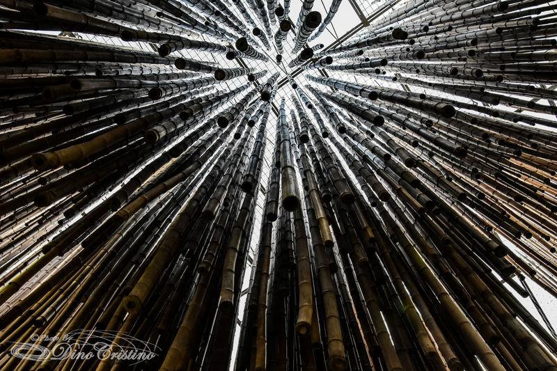 Expo Expo 2015 Expo Milano Street Art Street Photography Street Photo Dino Cristino Contrast Contrasto Prospettiva Milano Bamboo