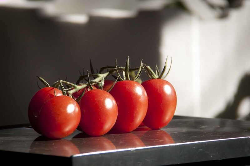 Close-up of tomatoes on table