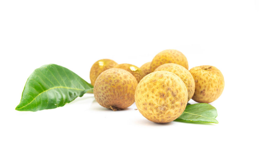 Longan fresh isolated on white background Yellow; White; Background; Rubber; Duck; Grass; Rubber Duck; Game; Play; Fun; Isolated; Studio; Summer; Child; Plastic; Childhood; Children; Kindergarten; Toy; Splash; Toys; Bath; Bathing; Baby; Infant; Toddler; Splashing; Swimming; Ducks; Duckling; Phone Close-up Diet; Flesh; Food Food And Drink Fruit Group Of Objects Healthy Eating Healthy; Isolated; Longan; Longans; Nature; Organic; Small; Sweet; Thailand; Tropical; View; Top; Pool; Swimming; Woman; Summer; People; Water; Above; Blue; Girl; Hotel; Swim; Young; Vacation; Leisure; Aerial; Relax; Person; Background; Lifestyle; Bikini; Floating; Sport; Resort; Body; Beach; Holiday; Tropical; Travel; Female; Fun; Sea; Man White Background