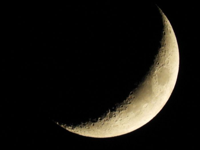 Sharp first quarter moon shot in July Night Moon Sky Space Astronomy Moon Surface Copy Space Planetary Moon Scenics - Nature Low Angle View Clear Sky Crescent No People Nature Outdoors Idyllic