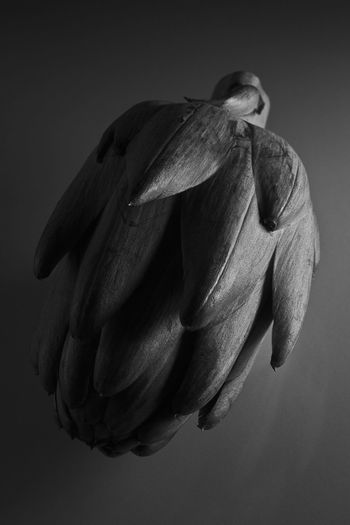 Artichoke Beauty In Nature Blackandwhite Close-up Darkness And Light Food Food And Drink Nature No People Studio Shoot Studio Shot