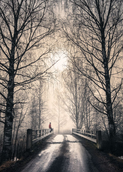 Foggy landscape with old bridge and road at spring morning in Finland Finland Man Morning Sitting Sunlight Travel Atmospheric Mood Bare Tree Birch Branch Bridge Direction Fog Foggy Landscape Mystery Nature Outdoors People Road Scenics - Nature Sunrise The Way Forward Tranquility Tree The Great Outdoors - 2018 EyeEm Awards
