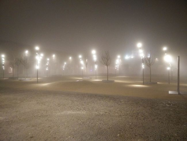 pavaglione foresta led Foresta Led EyeEm Selects Forest Fog Illuminated Illumination Illuminations Illuminated Buildings Illuminated Trees Illuminated Night Night Illuminated Floodlight Outdoors Street Light No People Shades Of Winter
