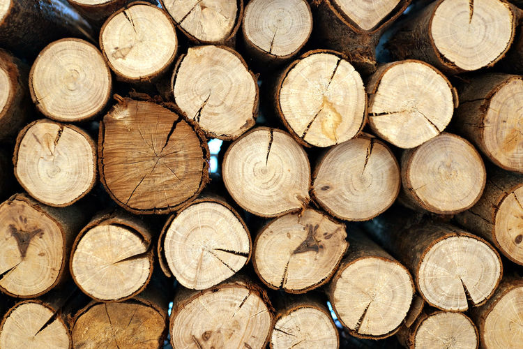 Wood stock background Abundance Arrangement Backgrounds Day Deforestation Environmental Issues Forestry Industry Fossil Fuel Fuel And Power Generation Full Frame Heap Large Group Of Objects Log Lumber Industry No People Outdoors Stack Timber Tree Ring Wood - Material Woodpile