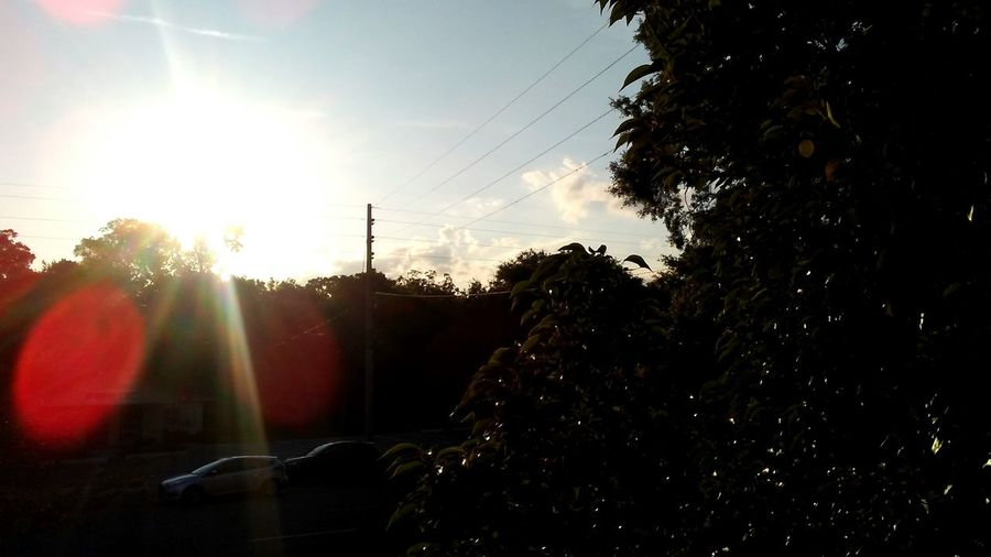 Beautiful light codes. Frequencies Red Lights Lightcodes Tree Sky Sunset