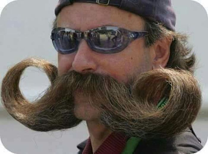 My Mo For Movember