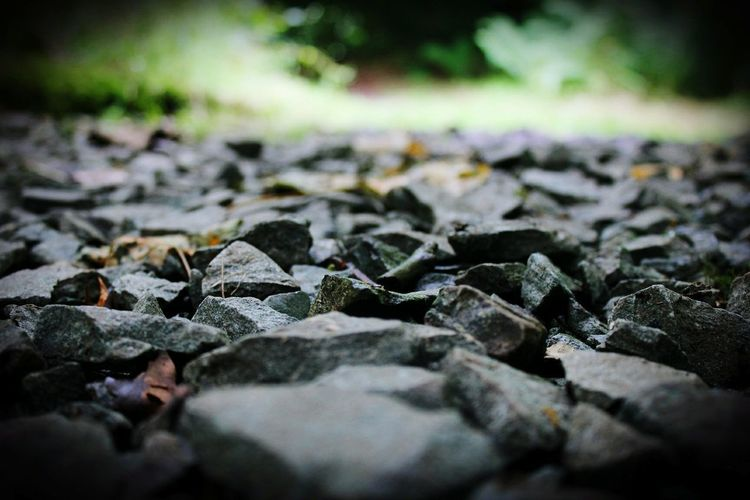 Nature Outdoors Close-up Rock - Object Naturetrail Country Countryside Countryside Landscape Park Fun Adventure Journey Amateurphotography Student No People Lava Day First Eyeem Photo