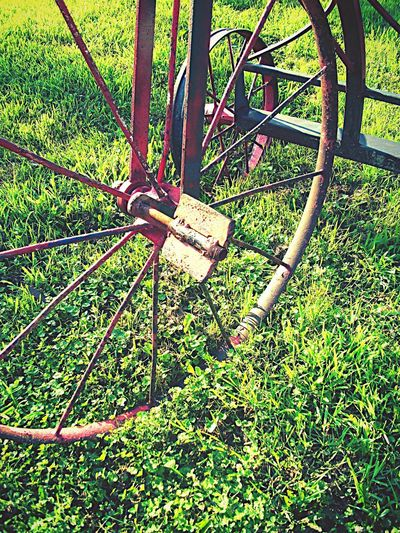Beauty in park. Bicycle Wheel Metal Transportation Grass Lock Day Outdoors No People Green Color Spoke Nature Pedal Close-up