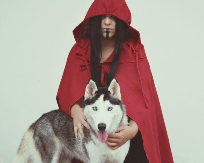 Lobo Animal Chapeuzinhovermelho Sommergefühle