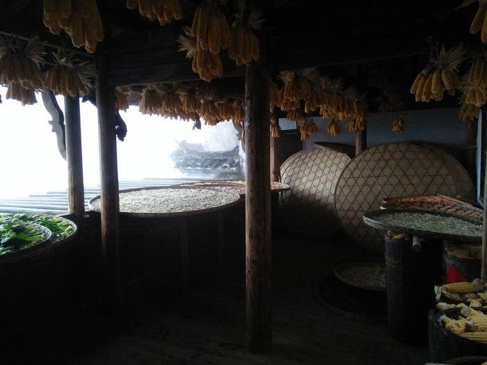 Sea Tropical