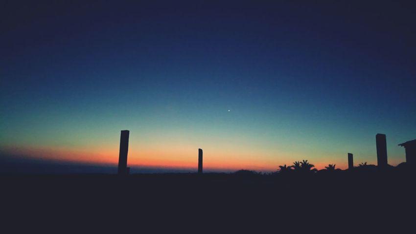 Astronomy Sunset Moon Tree Silhouette Sky Landscape