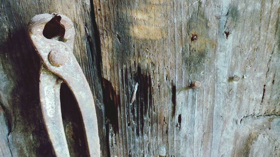 Wood - Material Close-up Textured  Weathered No People Metal Macro Photography Backgrounds Full Frame Macro_collection Macro Beauty Toolshed Tool Background Tools Of Trade Tool Box Vintage Tools Mans Best Friend Man At Work Manual Worker Distressed Wood Distressed Metal Distressednails Distressed