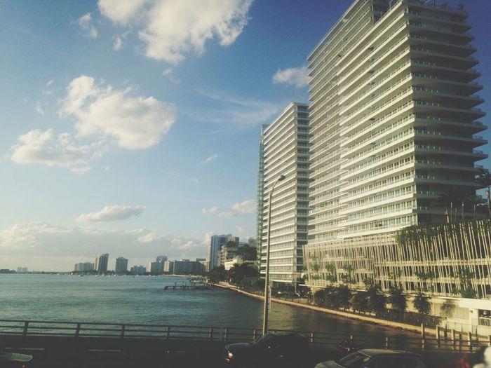 Miami Sunshine