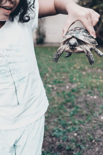 Midsection Of Girl Holding Turtle In Yard