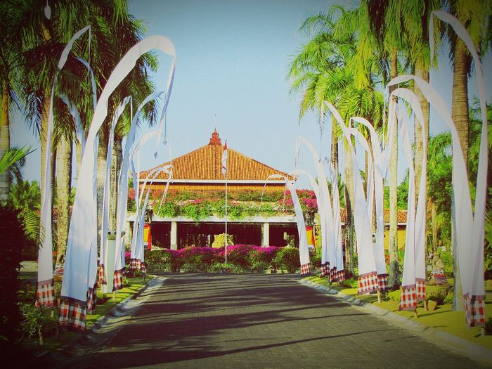 Bali? Bali INDONESIA Original Experiences Architecture Bilding Jurney Trees Travel World