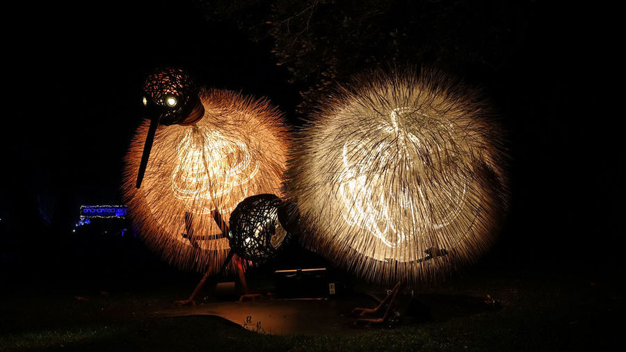 Illuminated fireworks against sky at night
