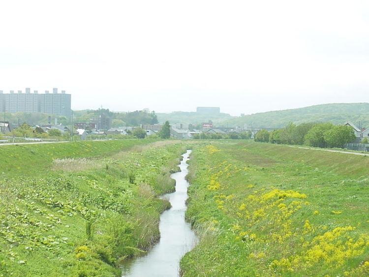どこまで続いてるのかな.... 小川 Creek 北海道 Hokkaido