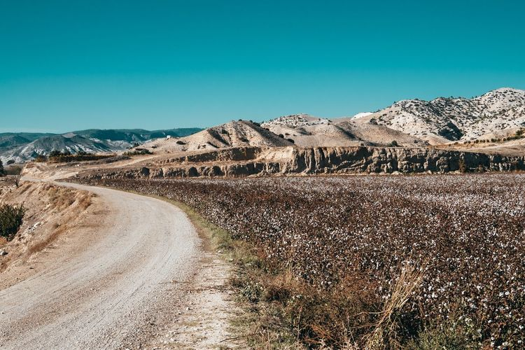 Dirt road on landscape against clear blue sky