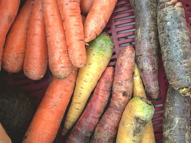 Carrot Food And Drink Healthy Eating Root Vegetable Food Freshness Wellbeing Vegetable Still Life High Angle View Choice No People Retail  Large Group Of Objects Full Frame Raw Food Variation Close-up Day For Sale