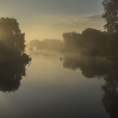Mist morning on the River Frome, Wareham, Dorset, UK River Frome Swans Water Reflections Beauty In Nature Day Mist Misty Morning Nature No People Outdoors Reflection River Tranquil Scene Tranquility Tree Water