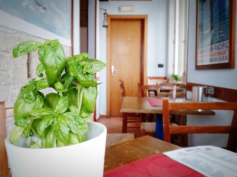 Basilico Bar Interior Design Interior Blue Green Plant Verde Interno Door Porta Table Tavolo