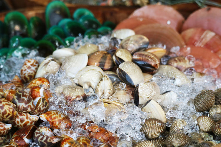 Close-up of shells for sale in market
