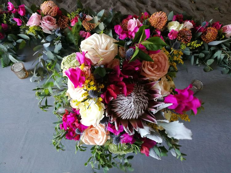 Flower Nature High Angle View Growth Plant No People Outdoors Day Beauty In Nature Fragility Flower Head Freshness Close-up Plant Flowers, Nature And Beauty Floral Arrangment Mexican Wedding Centerpiece Wedding Bouquet Wedding Dress Wedding Decoration Beach Wedding Weddingday  Wedding Bouquet