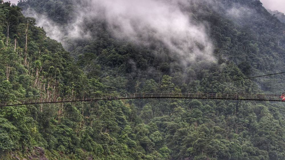 Abode Of Cloud No People Day Beauty In Nature Outdoors Nature Tree Growth Scenics Sky Water Bridge - Man Made Structure Bridge Bridge Photography Valley Meghalaya Northeast India Meghalaya Shillong Meghalayatourism Meghalaya India Shnongpdeng