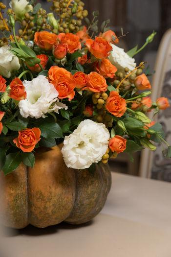 Close-up of orange flowers in vase