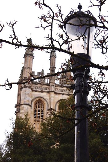 Magdalen Tower Architecture Built Structure Building Exterior Religion Low Angle View Tree Spirituality Place Of Worship Day Outdoors No People Bell Tower Oxford Architecture