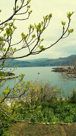 EyeEm Best Shots - Landscape Amasraturkey Amasra Kalesi My Best Photo 2015