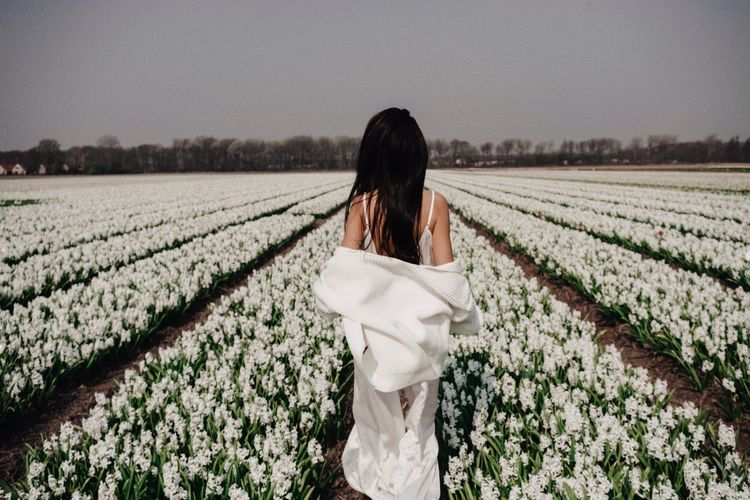 Holland Flower Rural Scene Plant Growth Agriculture Field Landscape One Person Women Land Nature Scenics - Nature