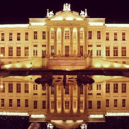 Paypalartysummer Szeged Helyiérték éjjelifények