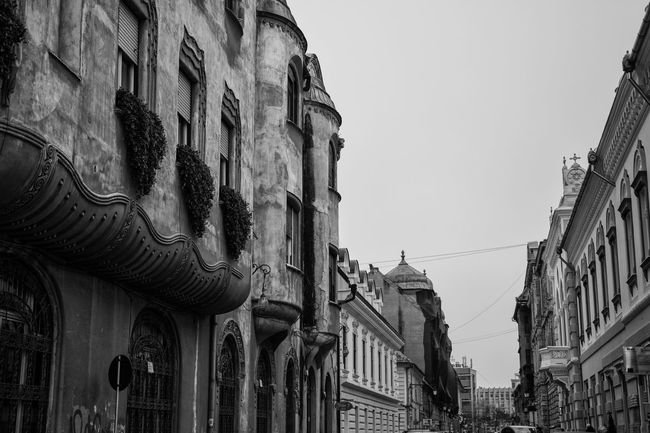 Just taking a walk through my Hometown, and watch the street Life 100D Ancient Ancient Civilization Architecture Banat  Black And White Building Exterior Built Structure Canon City Day Europe History Low Angle View No People Outdoors People Romania Sky Streetphotography Time Timis Timisoara Travel Destinations Traveling