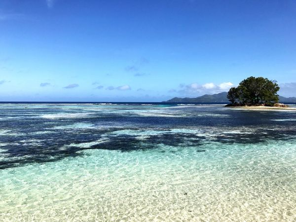 Sea Water Beauty In Nature Tranquil Scene Scenics Tranquility Nature Idyllic Beach No People Blue Horizon Over Water Day Outdoors Sky Clear Sky Tree Seychelles Maheisland