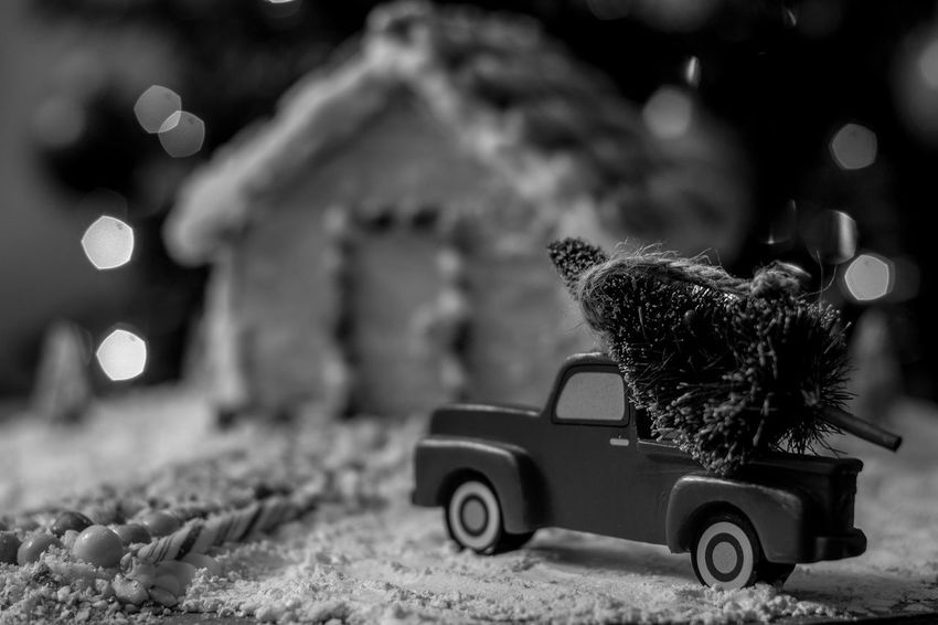 Christmas tree for the gingerbread house Winter Snow Gingerbread Holiday Food Truck Gingerbreadhouse Gingerbread House Background Christmas Bokeh Christmas Tree Night Before Christmas Christmas Red Truck Holidays EyeEm Selects Treat Bokeh Candycane  Candy Cane Candy Food Toy Car Indoors  Land Vehicle Toy Car No People Day Close-up